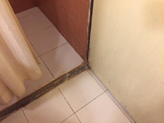 Keys Select Hotel Nestor Mumbai: Disgusting shower/floor