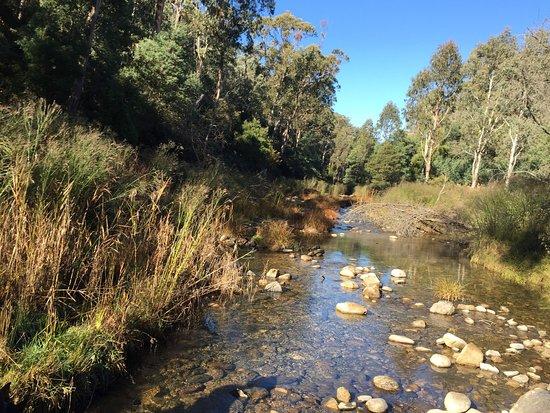 Tawonga, Australia: photo3.jpg