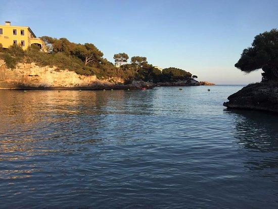 Barcelo Ponent Playa: The sea near the hotel!