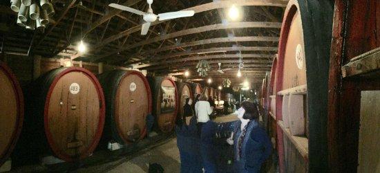 Pieter van Gent Winery & Vineyard: photo6.jpg