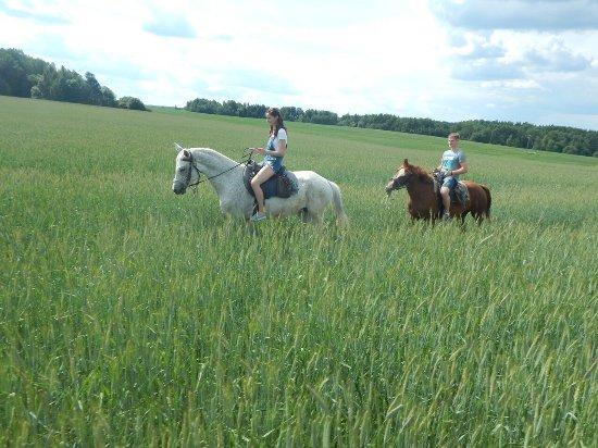 Horse Club Sportivnaya Loshad