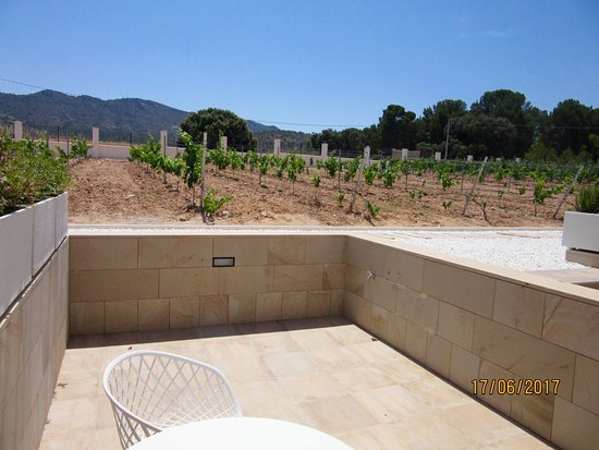 Yecla, İspanya: photo3.jpg