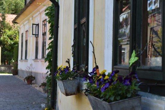 Visegrad ภาพถ่าย