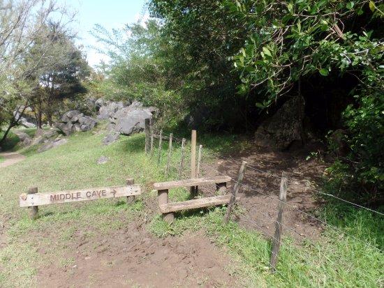 Whangarei, Nueva Zelanda: Der Eingang zu einer der drei Abbey Caves, begeistern ist auch die Landschaft drumherum