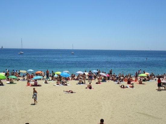 Bogatell Beach (Barcelona, Spain): from US$166 - Top Tips Before You Go - Tri...