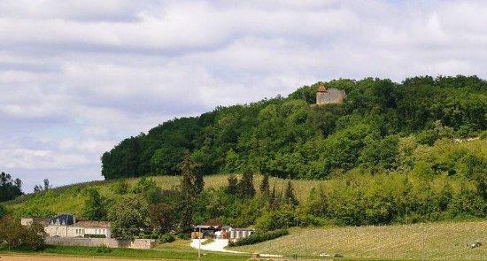 Loupiac, France : Vieux Cros