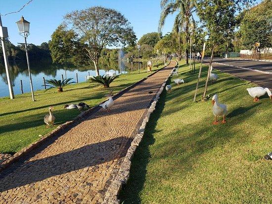 Parque Hotel Holambra : photo2.jpg