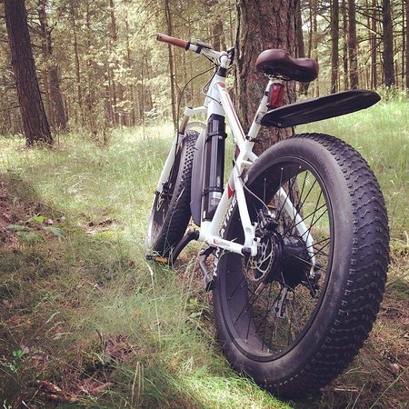 Fat Tire E-Bike Rental