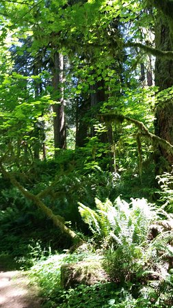 Oxbow Park, Gresham OR