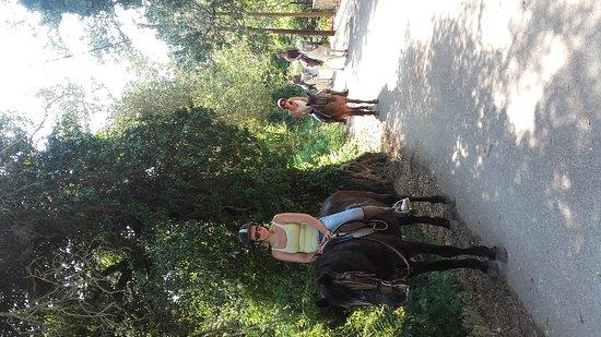 Trailriders Horse Trekking: 20170615_165144_large.jpg