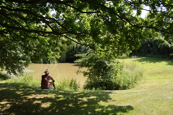 Halstead, UK: Wander along footpaths, across fields and through woodland or relax by one of the ponds at Pevor