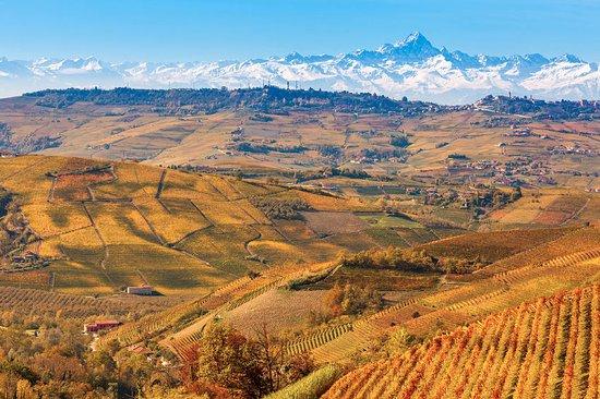 Clavesana, Italie : Fall season