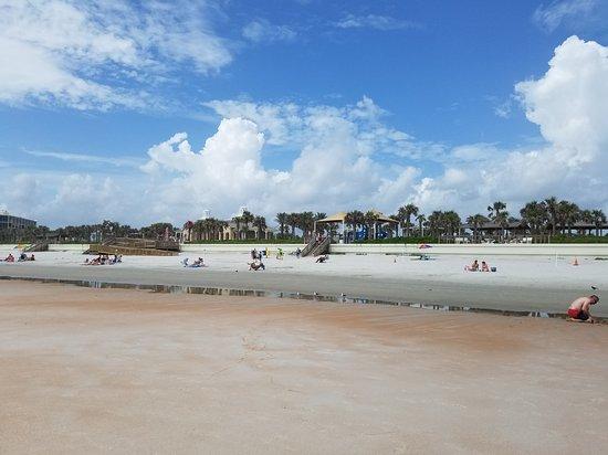 Ormond Beach, FL: 20170619_104908_large.jpg