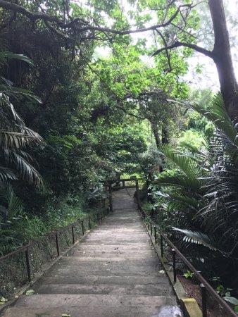 Hamahiga-jima Island (Uruma, Japan): Top Tips Before You ...