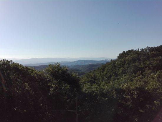 San Venanzo, Italia: Vista dalla camera