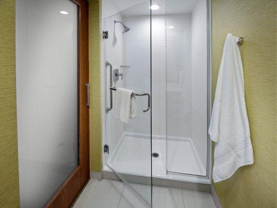 Latrobe, Πενσυλβάνια: Guest Bathroom - Shower