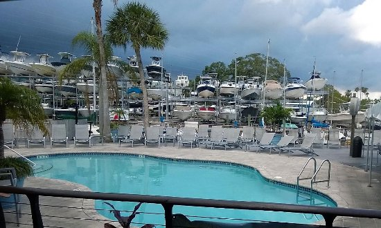 Ozona Blue Grilling Co: Pool next to restaurant