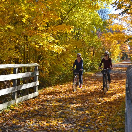 Suttons Bay, MI: Leelanau Wine Trail Tour in the Fall