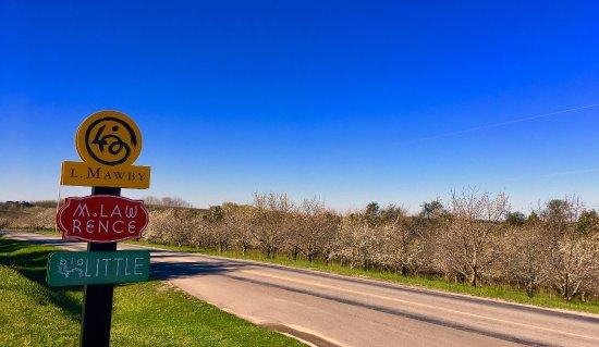 Suttons Bay, MI: Beginning of cherry blossom season from L.Mawby Vineyards