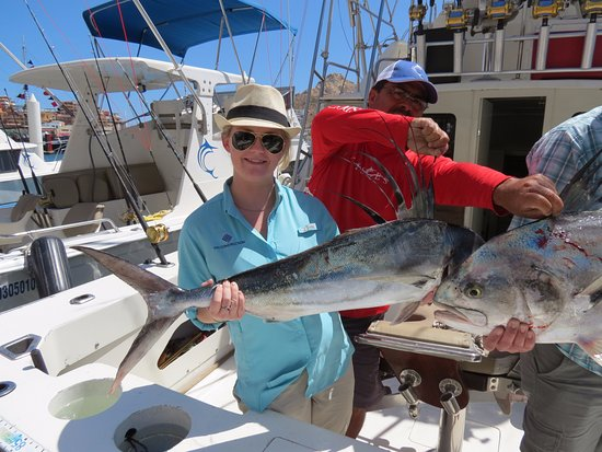 My rooster fish picture of pisces sportfishing cabo san for Rooster fish cabo