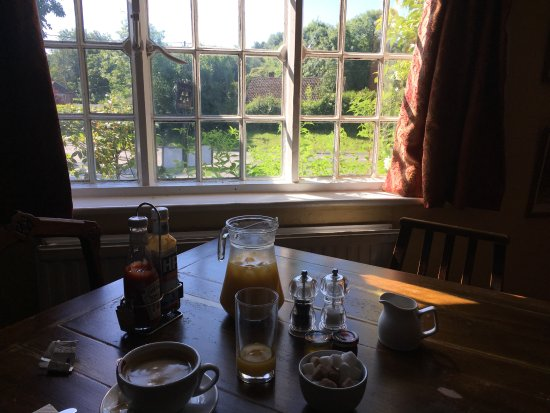 Wickham, UK: The view from my breakfast table