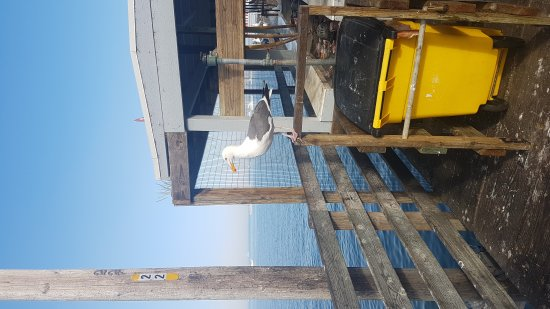 Avila Beach, CA: 20170618_180219_large.jpg