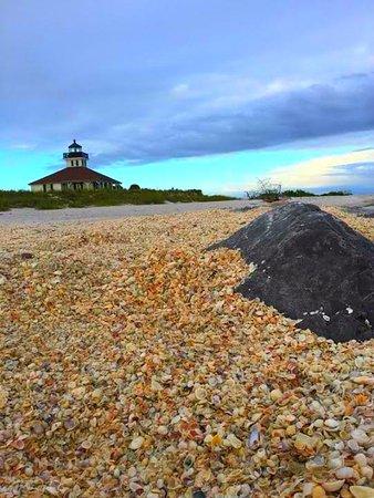 โบกากรองด์, ฟลอริด้า: Seashells at Port Boca Grande