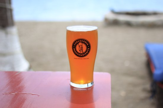 Playa Potrero, Costa Rica: Freshly Brewed IPA