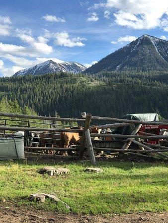 Alpine, Wyoming: photo4.jpg
