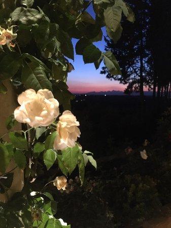 Montespertoli, Italia: un tramonto