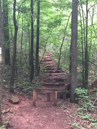 Ruffner Mountain Nature Preserve : Absolutely fantastic trail!