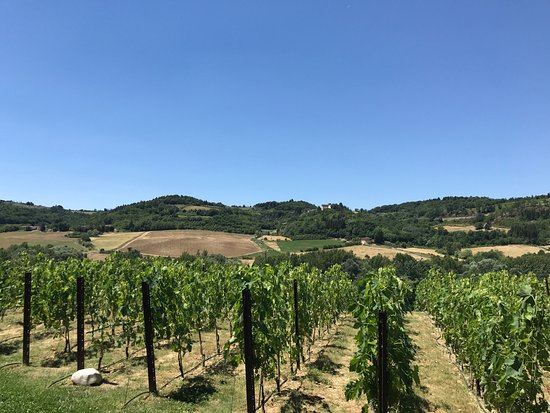 San Casciano in Val di Pesa, Italy: photo0.jpg