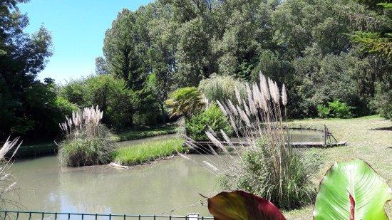 Saint-Donat-sur-l'Herbasse, France: Vue de la terrasse extérieure
