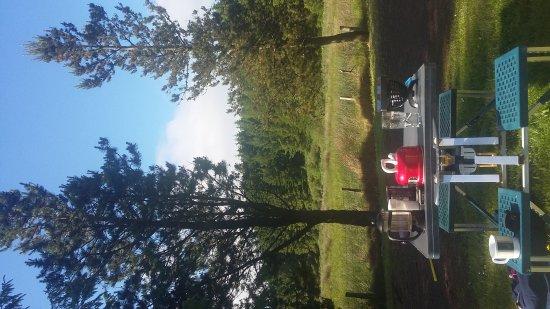 Watertop Farm : 20170617_092607_large.jpg
