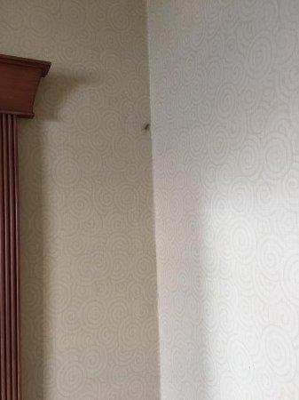 Americana Resort: giant bug