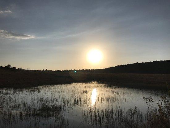 Welgevonden Game Reserve, Sydafrika: photo6.jpg