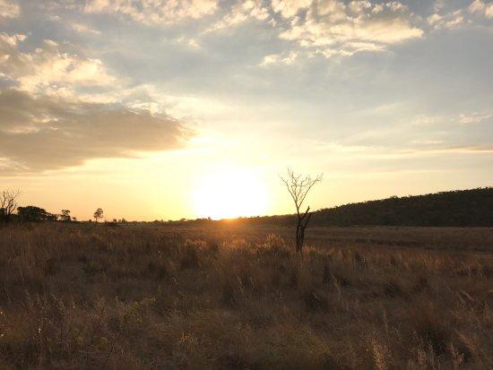 Welgevonden Game Reserve, Sydafrika: photo7.jpg