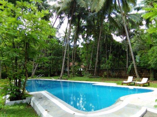Swimming Pool Foto Botanique Assagao Tripadvisor