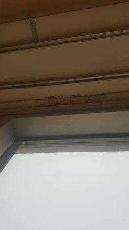 Crowne Plaza Tulsa - Southern Hills: More unhealthy mold