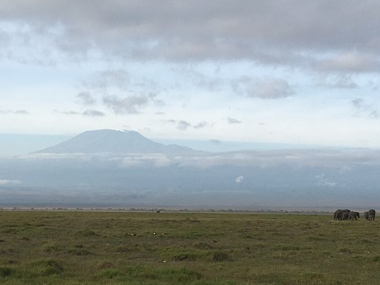 Amboseli National Park, Kenia: photo1.jpg