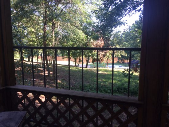 Natchitoches, LA: View from the back porch.