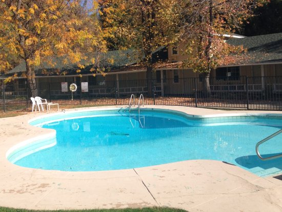 Badger, CA:  Shamrock shaped pool