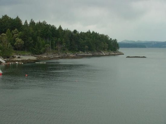 Gabriola Island, Kanada: Bay in front of Seameadows. (our house)