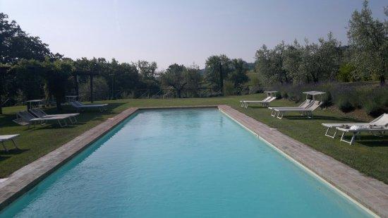 San Casciano dei Bagni, Italia: La piscina con sale marino,fantastica .