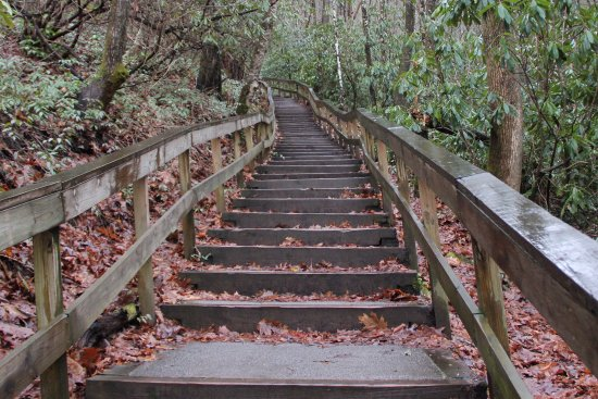 Mingo Falls: Start of the trail is lots of steps!
