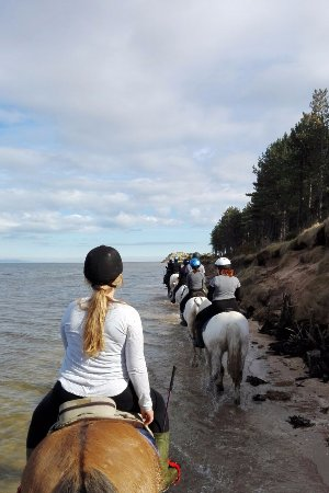 Tain, UK: trekking on the beach