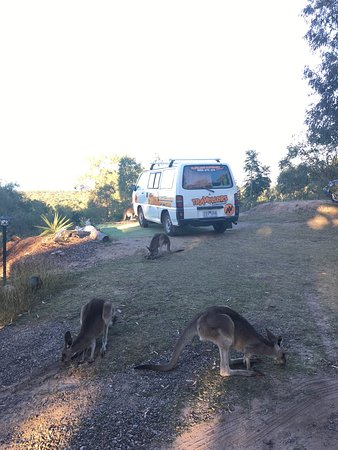 Agnes Water, Αυστραλία: photo1.jpg