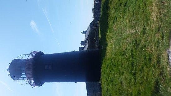 Ballycotton, Irland: 20170616_153151_large.jpg