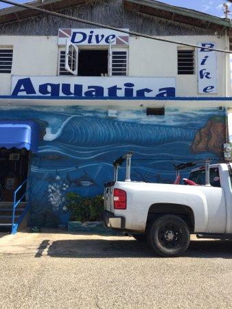 Aquatica Dive and Surf: photo0.jpg