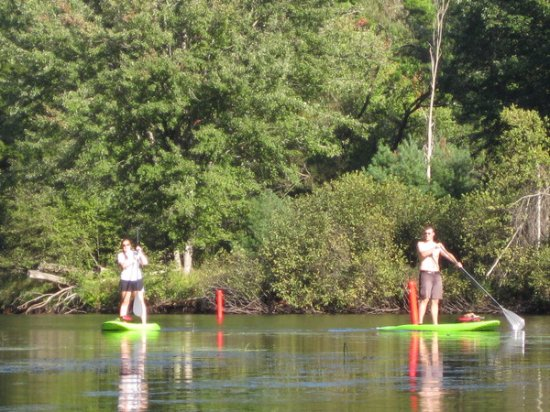 Raymond, ME: Try stand up paddleboards for a different experience!